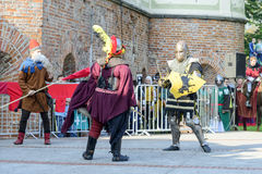 Old knights event. Royalty Free Stock Photos