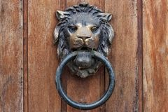 Old knocker in the form of a lion head. royalty free stock image