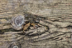 Old Knotted Rotten Cracked Floorboard Texture - Detail Royalty Free Stock Photos