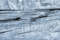 Old Knotted Wood Blue Grunge Background Texture Stock Image