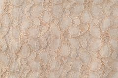 Old lace fabric close view Royalty Free Stock Photos