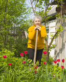 Old lady gardening Royalty Free Stock Photo