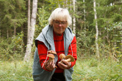 Old lady with mushrooms Stock Photos