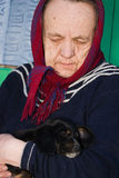 The old lady with a puppy. Stock Photo