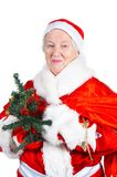 Old Lady- Santa. Old Lady. Santa Clause with the bag with gifts stock photo