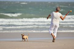 An old lady is about to throw a green tennis ball. And dog looking ball in hand stock photo