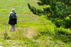 Old lady walking in nature on sunny spring day Royalty Free Stock Image