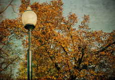 Old lantern in the autumn park Stock Images