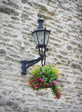 Old lantern with flowers Stock Images