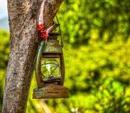 Old lantern on tree Royalty Free Stock Photo