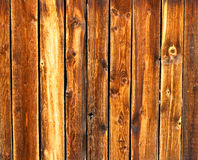 Really old larch wooden texture Stock Photography