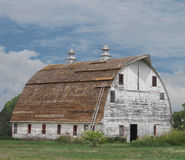 Old large white wooden barn with curved roof. Royalty Free Stock Photo