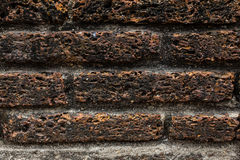 Old laterite brick wall. Picture of old laterite brick wall background Royalty Free Stock Photos