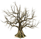 Old leafless tree. 3D render of an old leafless tree Stock Photo