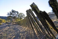 Old leaning picket fence. A picket fence in Mendocino County, California, old and leaning over Stock Photo
