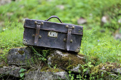 Old leather carpetbag Royalty Free Stock Image
