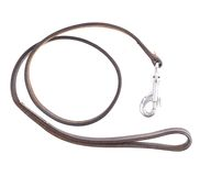 Old leather dog leash composition Royalty Free Stock Image