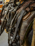 The old leather saddle horse close up detail Royalty Free Stock Photos
