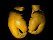 Old leather yellow boxing gloves hanging in the darkle stock image