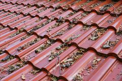 Old leaves on the roof stock photography