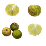 Old lemon aged 3 weeks stored in the refrigerator. Isolate for 4 view of lime or lemon. Stock Image