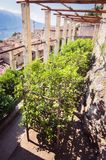 Old lemon house in Limone sul Garda, Italy. Royalty Free Stock Photos