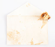 Old letter with dry rose bud Royalty Free Stock Images