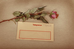 Old Letter with text Love letter written with ink. sepia texture background. With a withered rose Stock Image
