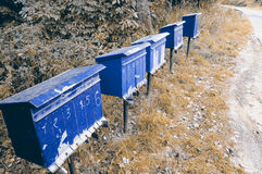 Old letterboxes Stock Images