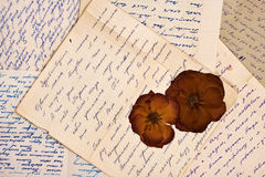 Old letters. Grunge vintage background with old latters and dried roses Stock Images