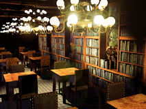 Old library. Old great library enlightened by big ceiling lamps Royalty Free Stock Photos
