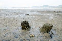 Old light stump at sea coast Royalty Free Stock Photography