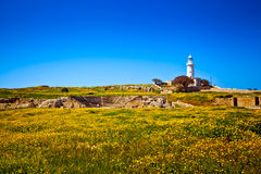 The old lighthouse in Paphos Stock Photo