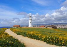The old lighthouse in paphos cyprus surrounded by historic buildings with spring flowers growing alongside a path leading to the. Sea with blue sky and white stock images