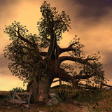 Old like a tree. 3d rendering an old tree at an abandoned place as illustration Stock Photos