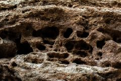 Old limestone. Abstract background with stone texture royalty free stock images