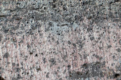 Old limestone surface Royalty Free Stock Photography