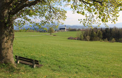 Old linden tree and bench, pilgrimage church wilparting Stock Photo