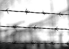 Old lines of barbed wire to demarcate the border Stock Photos
