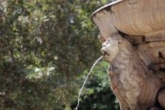 Old lion fountain Stock Photo