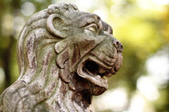 Old Lion Head Royalty Free Stock Photography