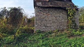 Old little house with brick wall and grape leaves.  stock footage