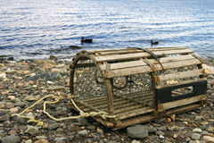 Old lobster trap Stock Photo