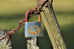 Old lock on barbed wire Stock Photo