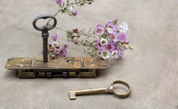 Old lock with two keys with flowers royalty free stock images