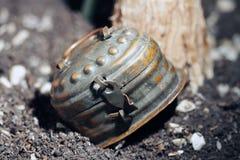 Old locked tin box royalty free stock images