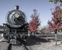 Old locomotive engine. Front view of old locomotive engine with foliage Stock Photography