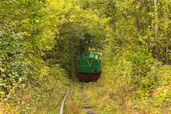 Old locomotive leaves from the trees. Tunnel of love - wonderful place created by nature.  Royalty Free Stock Images