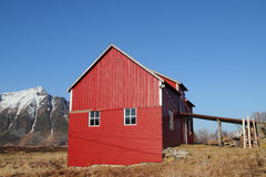 Old Lofoten's barn under  blue sky Royalty Free Stock Photography