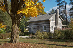 Old log cabin with autumn trees Stock Photo
